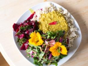 Metta Earth Vegetarian Meals