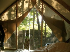 Metta Earth Institute Accommodations: Wall Tent Interior