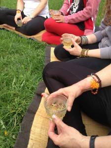Ecology of Yoga Group